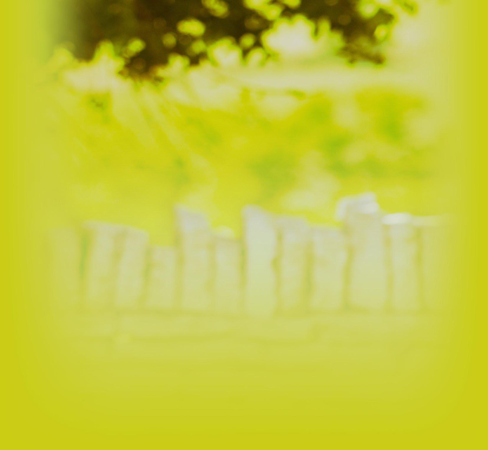backgroundgreen